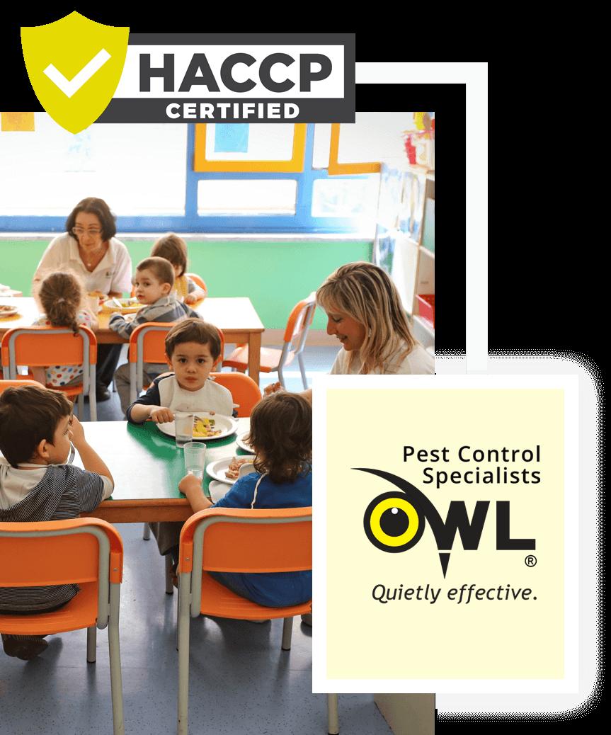 childcare-pest-control-services-Owl Pest control Dublin