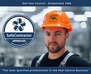 owl-pest-control-technician-safecontractor Owl Pest Control Dublin