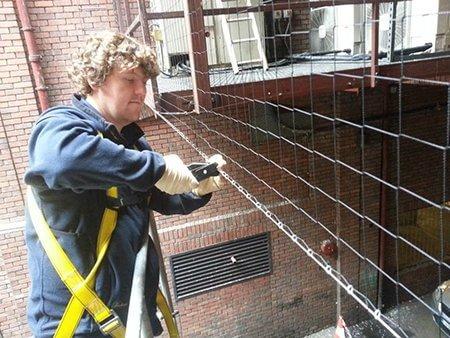 pest-control-service-bird-netting-owl-pest-control-dublin