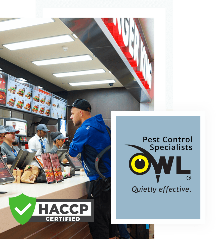 pest-control-services-for-fast-food-take-away-Owl Pest Control Dublin