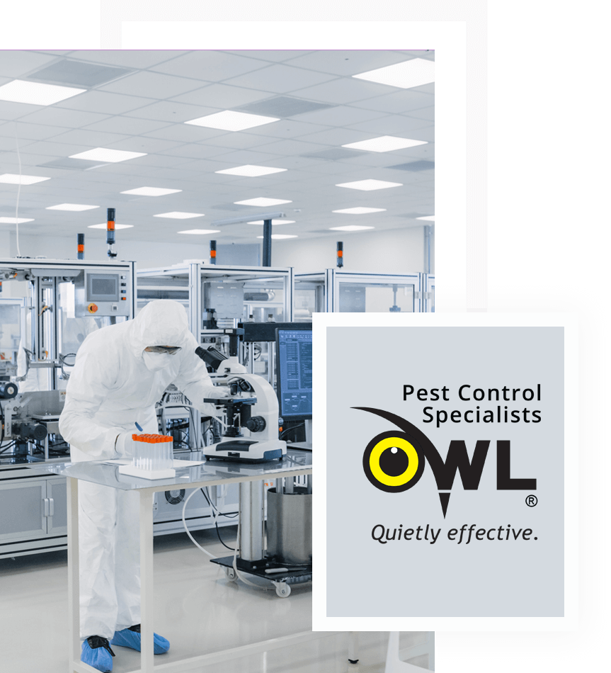 pest-control-services-for-laboratories-Owl Pest Control Dublin