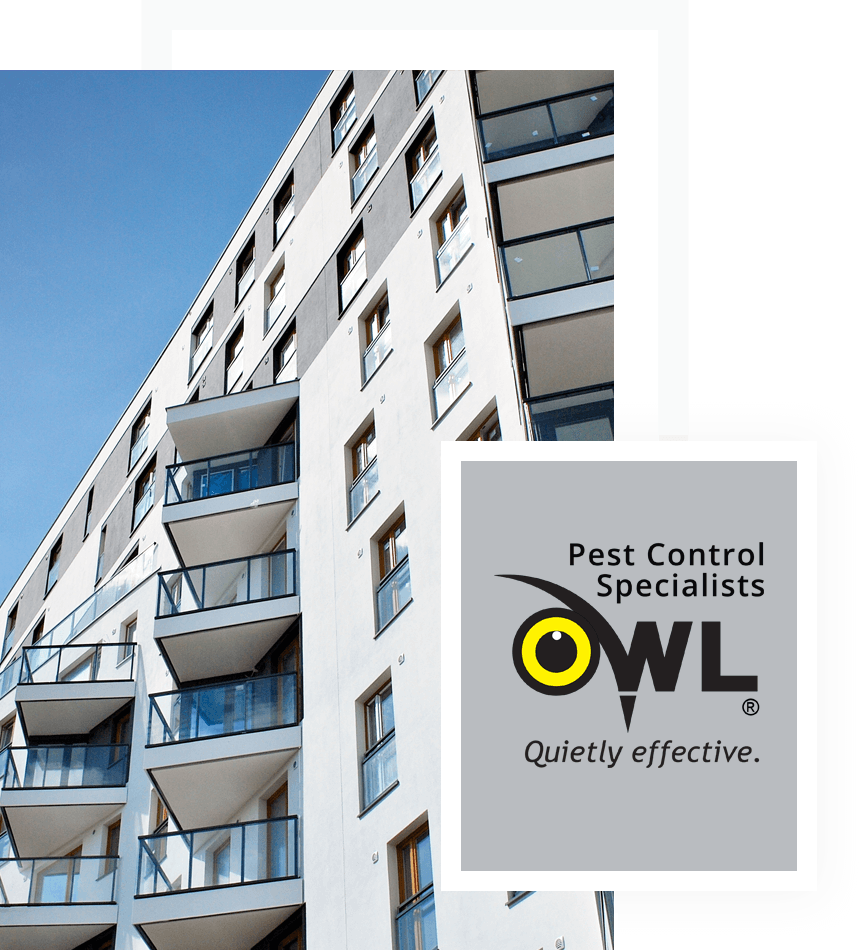 pest-control-services-for-property-management-residential-apartments-Owl Pest Control Dublin
