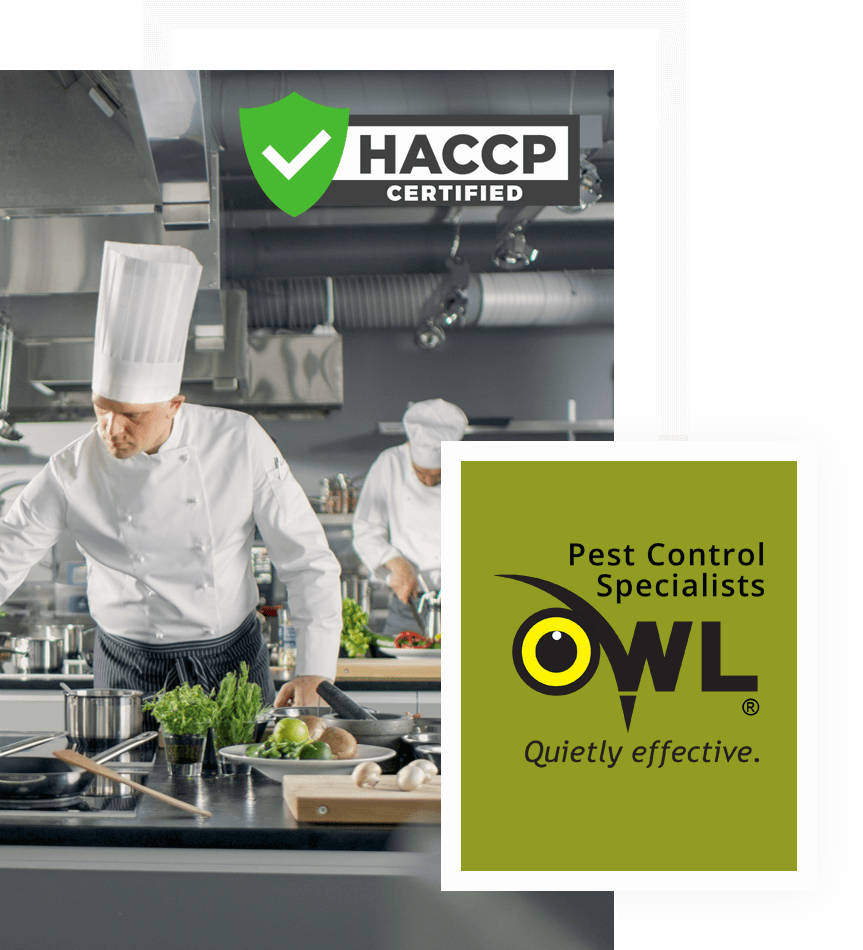 pest-control-services-for-restaurants-Owl Pest Control Dublin