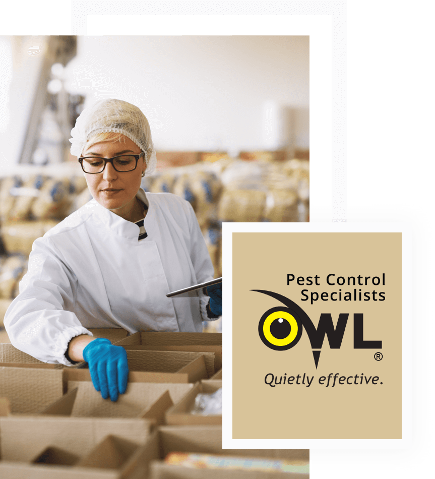 pest-control-services-for-warehousing-food-distribution-Owl Pest Control Dublin