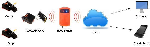 wedge-24-radio-monitored-rat-mice-pest-control