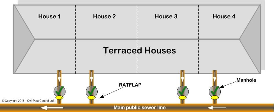 Rat Flap Sewer Installation