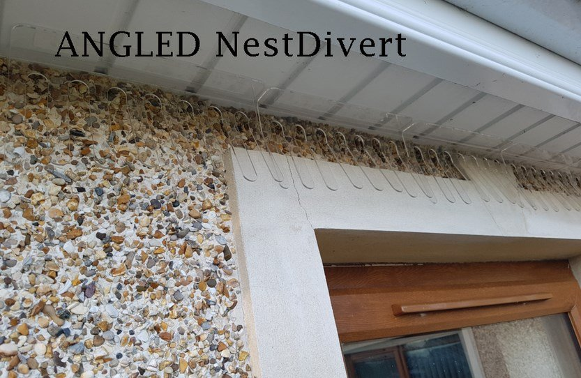 house-martin-swallows-nest-deterrent-angled-nestdivert-2-Owl Pest Control Ireland
