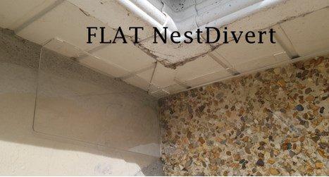 house-martin-swallows-nest-deterrent-flat-nestdivert-2-Owl Pest Control Ireland
