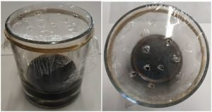 Homemade Fruitfly Trap - Basalmic vinegar and small holes on cling film