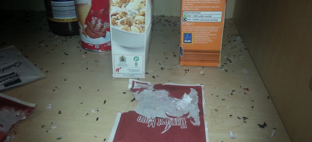 Rodent droppings in food press (Dublin)