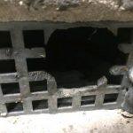 Rat gnawed through metal air vent - Owl pest control Dublin