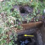 Rats burrowed from manhole to ground - Owl pest control Dublin