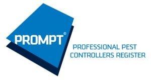 Basis PROMPT logo