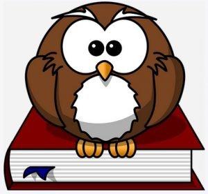 Scholar learner